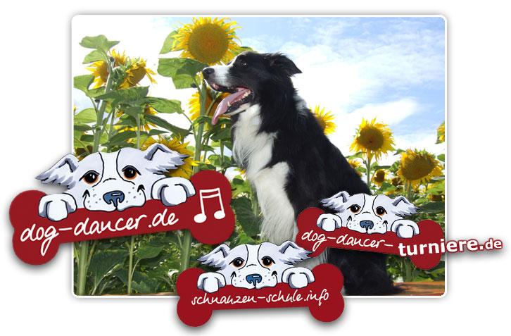 Dog Dancer